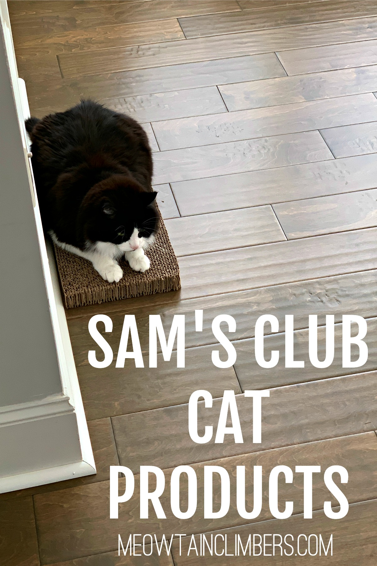 black & white fluffy cat on a cat scratcher with text that reads Sam's Club Cat Products