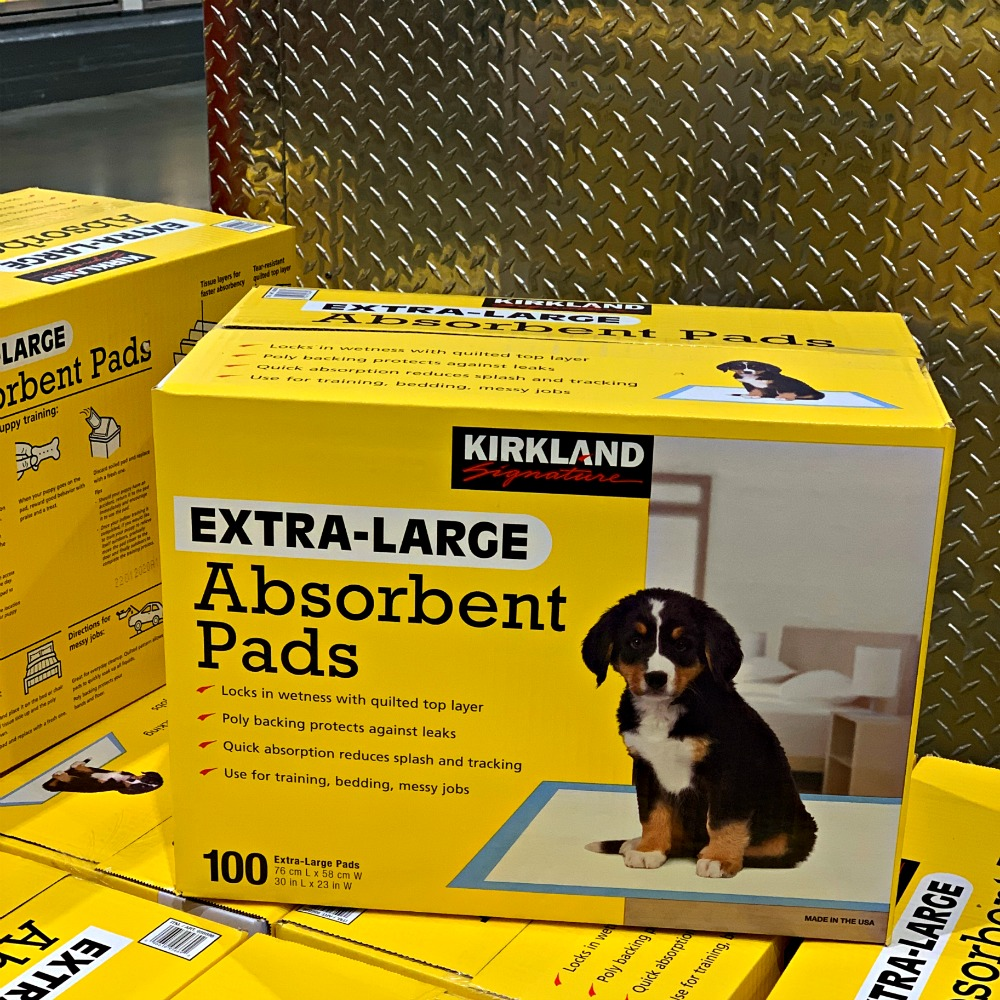 yellow box of puppy absorbent pads at Costco